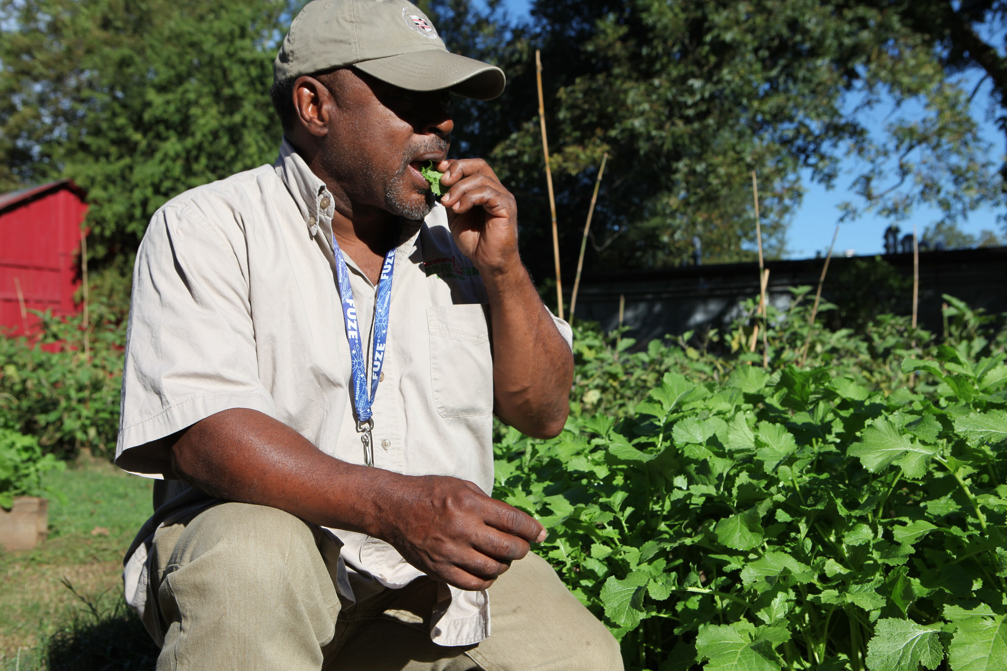 Metro Atlanta Urban Farm's Bobby Wilson gets a taste of spicy mustard greens.