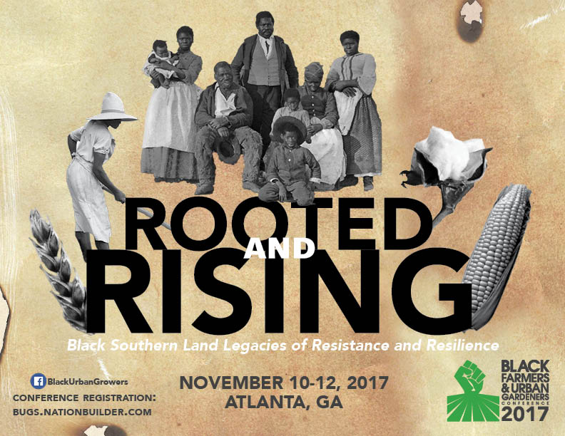 Rooted_Rising_5x7.jpg