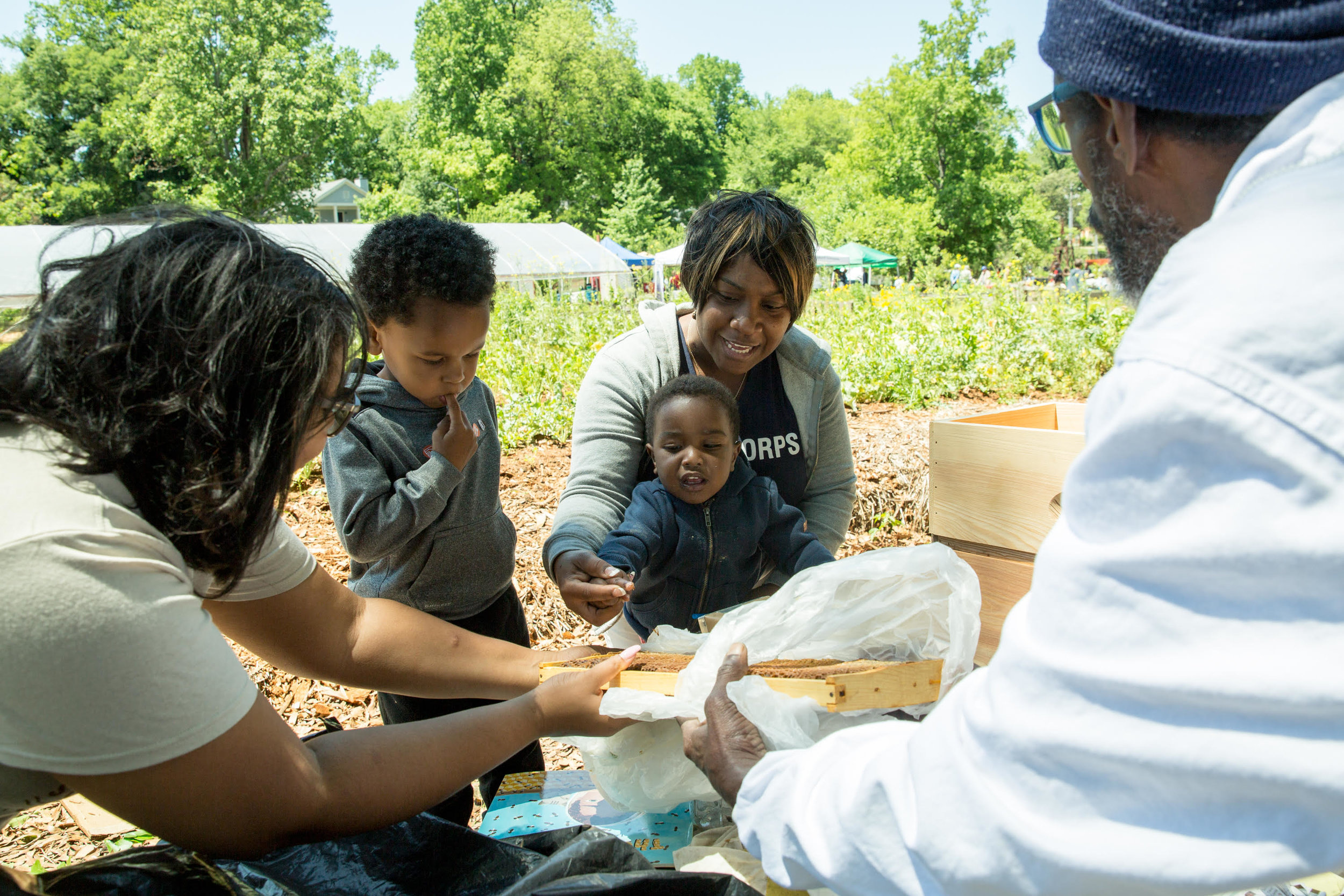 The Kids Corner at Soil Festival 2018 is better than ever!  Click here to learn more about the activities we have planned.