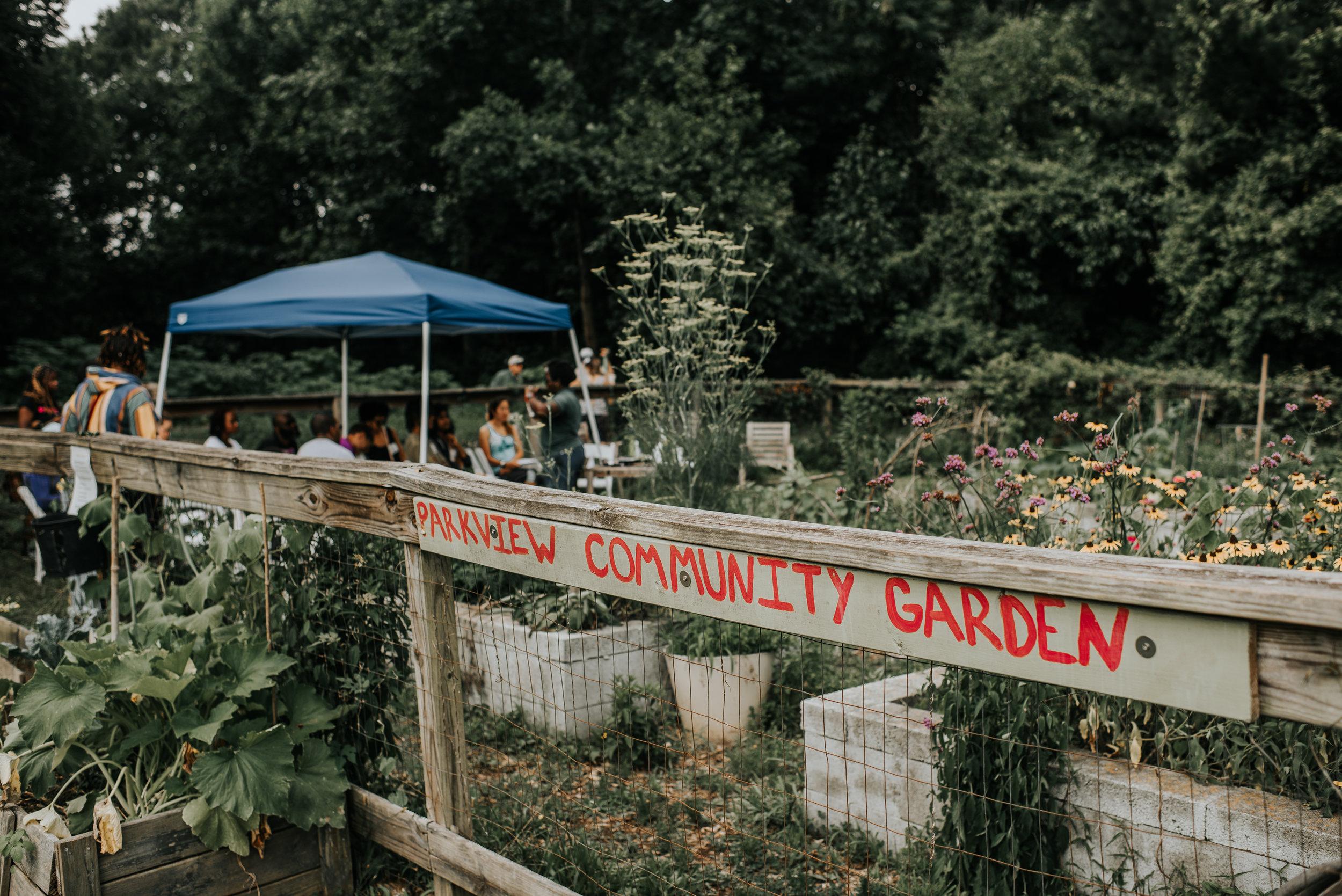 parkview community garden-13.jpg