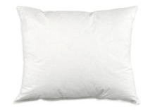 Pillow Insert Not Included