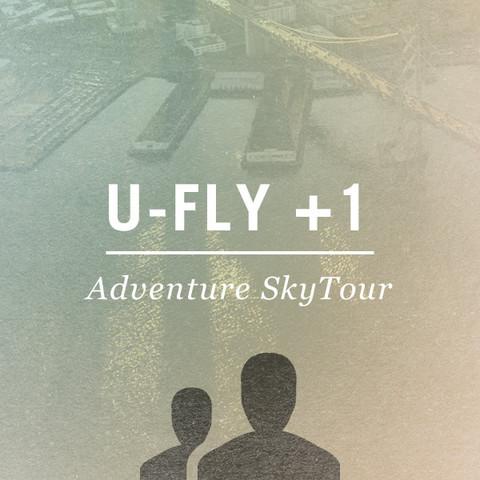 U-Fly.jpg