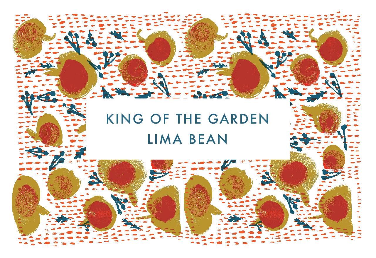 King of the Garden Lima Bean
