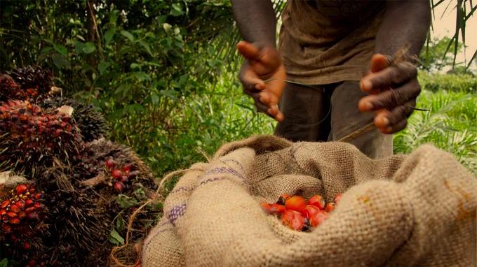 It Take A Village Africa_ 308.jpg