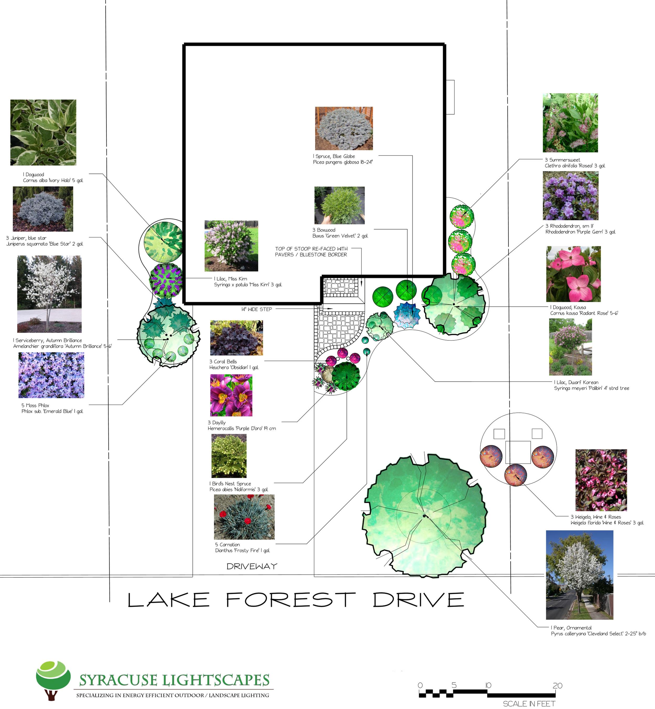 FRONT PLANTINGS.jpg