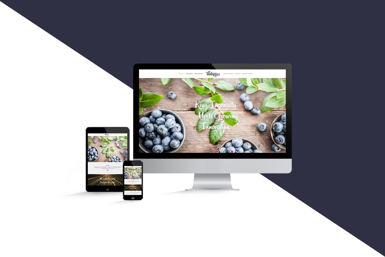 berryco_website_screens_mockup_1C.jpg