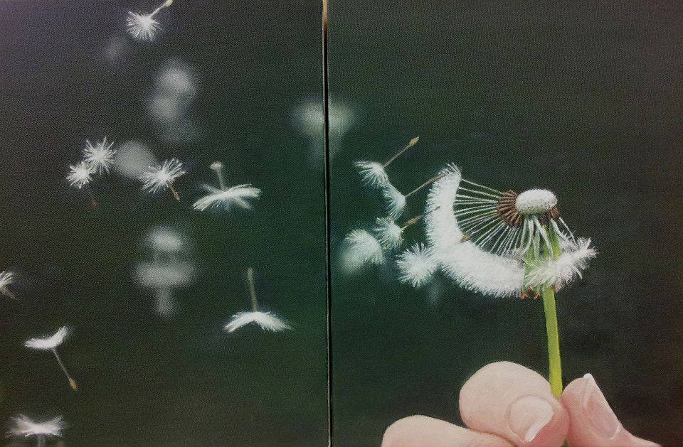 Dandelion Diptych