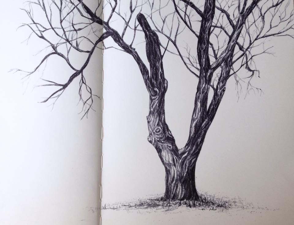 Elmira College Tree - Winter