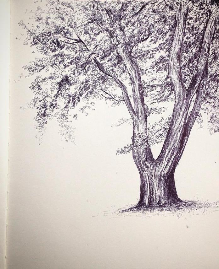 Elmira College Library Trees, Spring