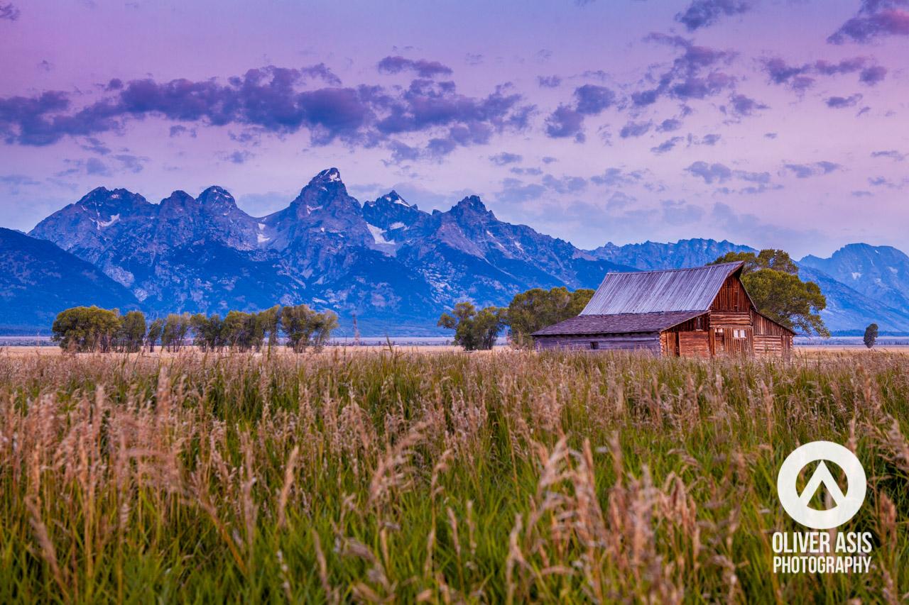 Mormon Row Morning in Grand Teton National Park