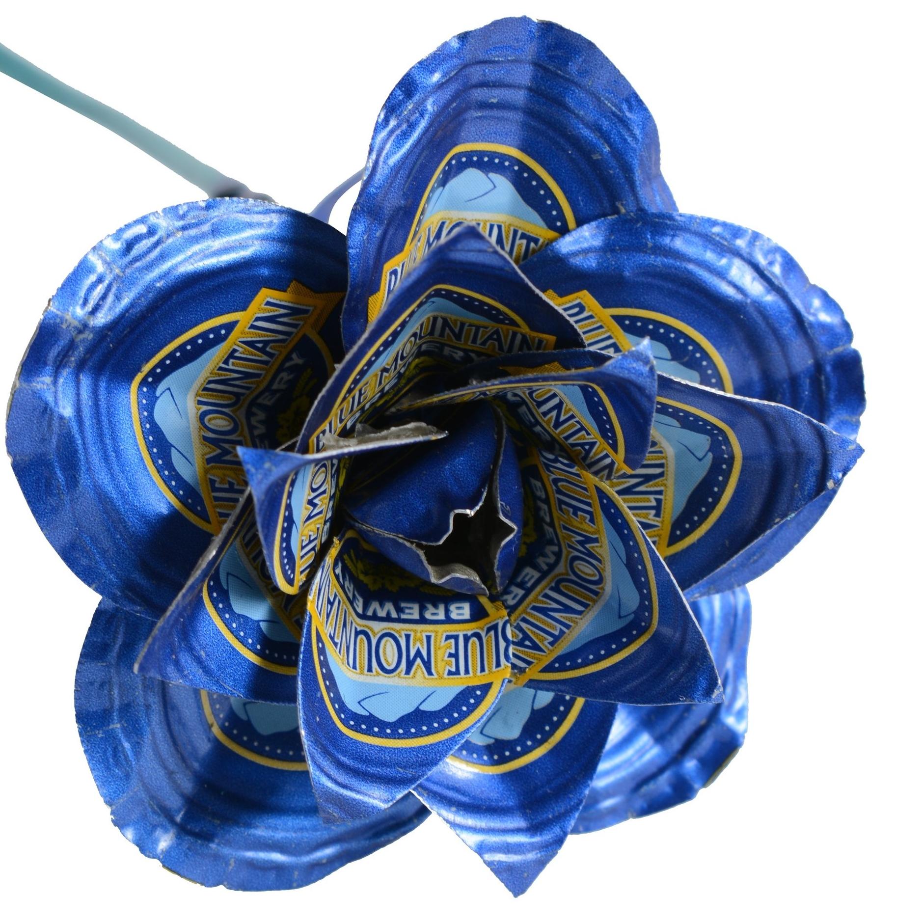 rose - Blue Mountain.jpg