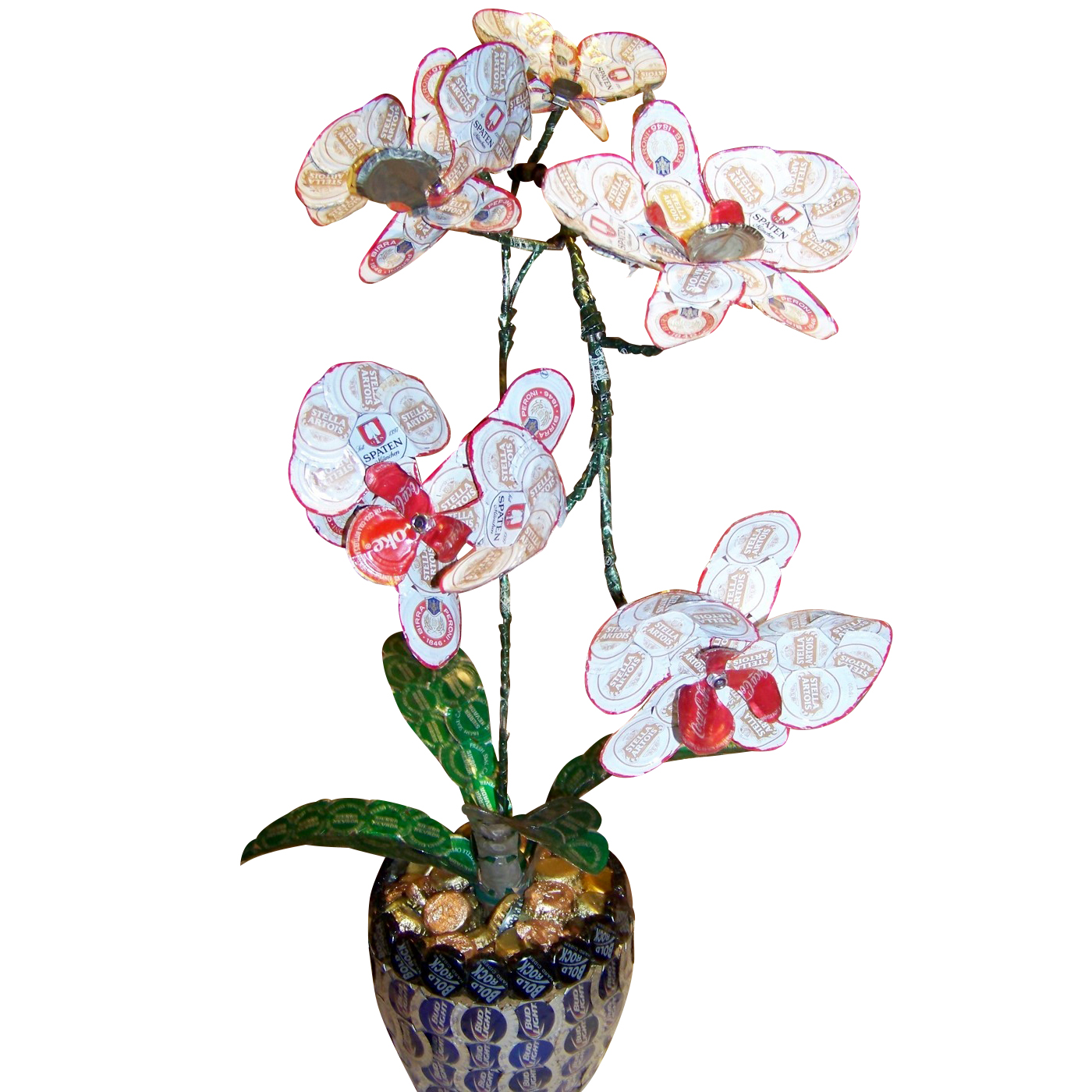 Orchid front copy.jpg
