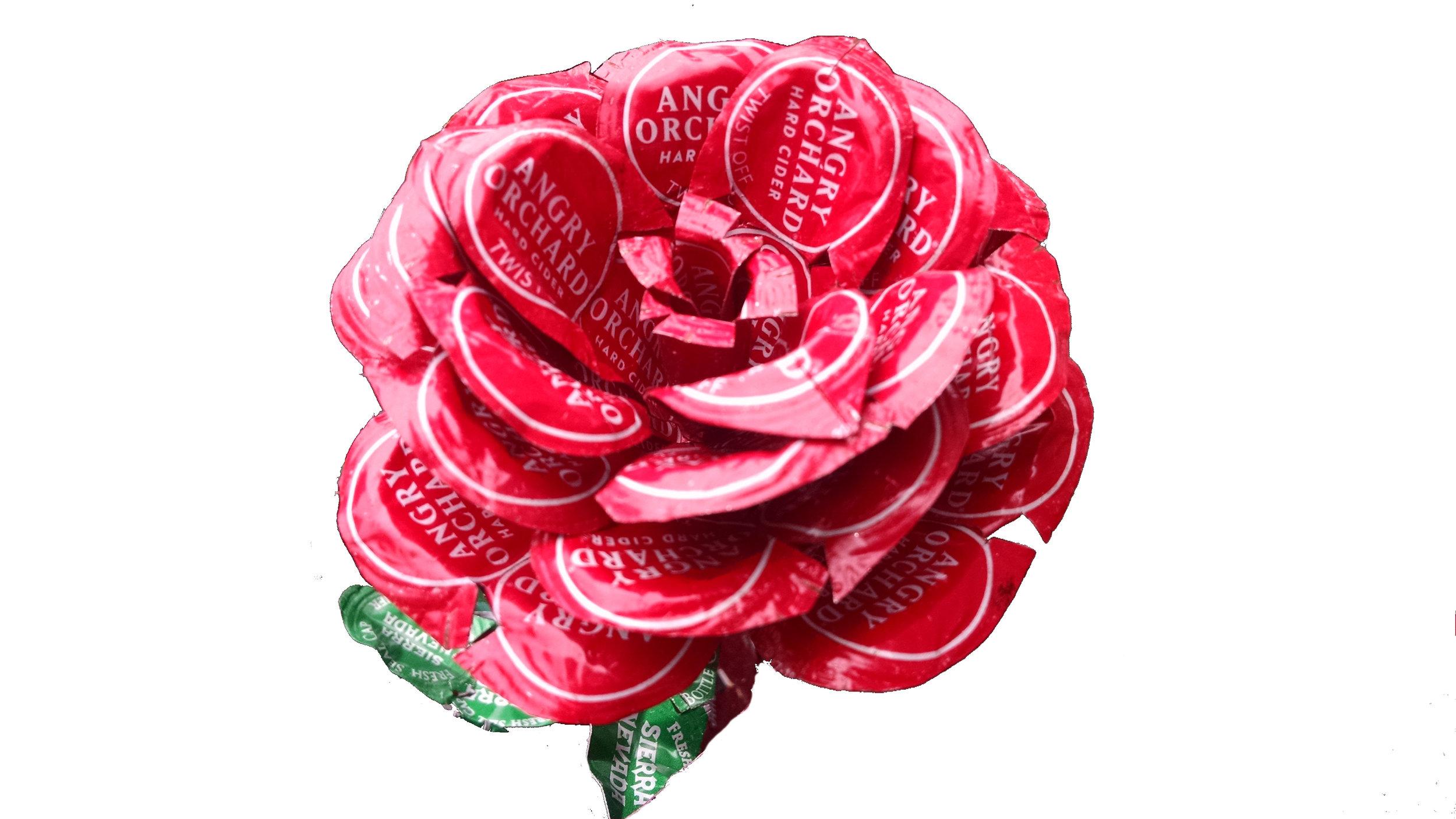 Rose AO.jpg