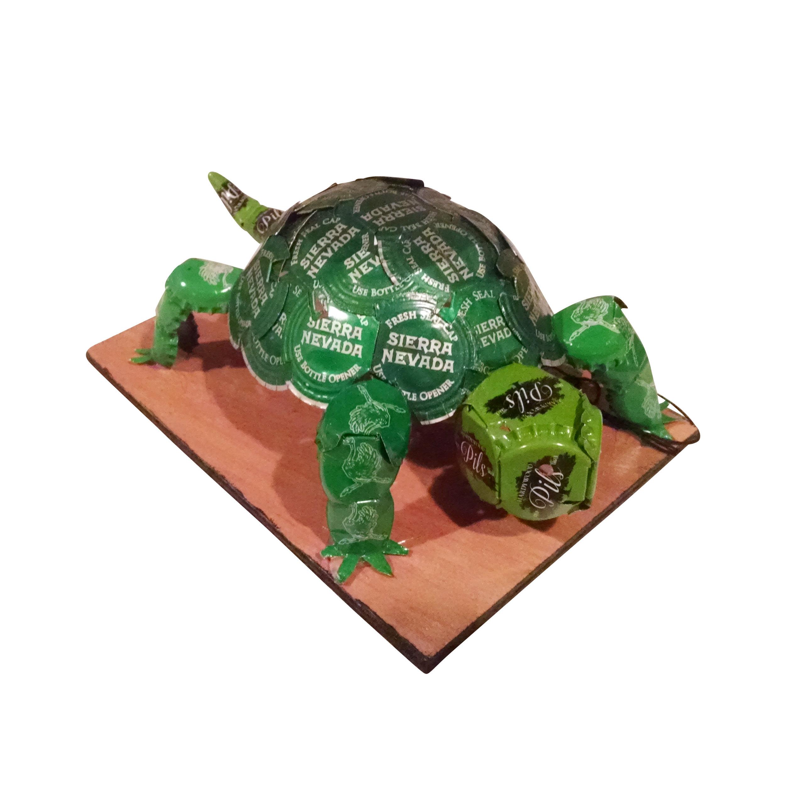 turtle copy.jpg