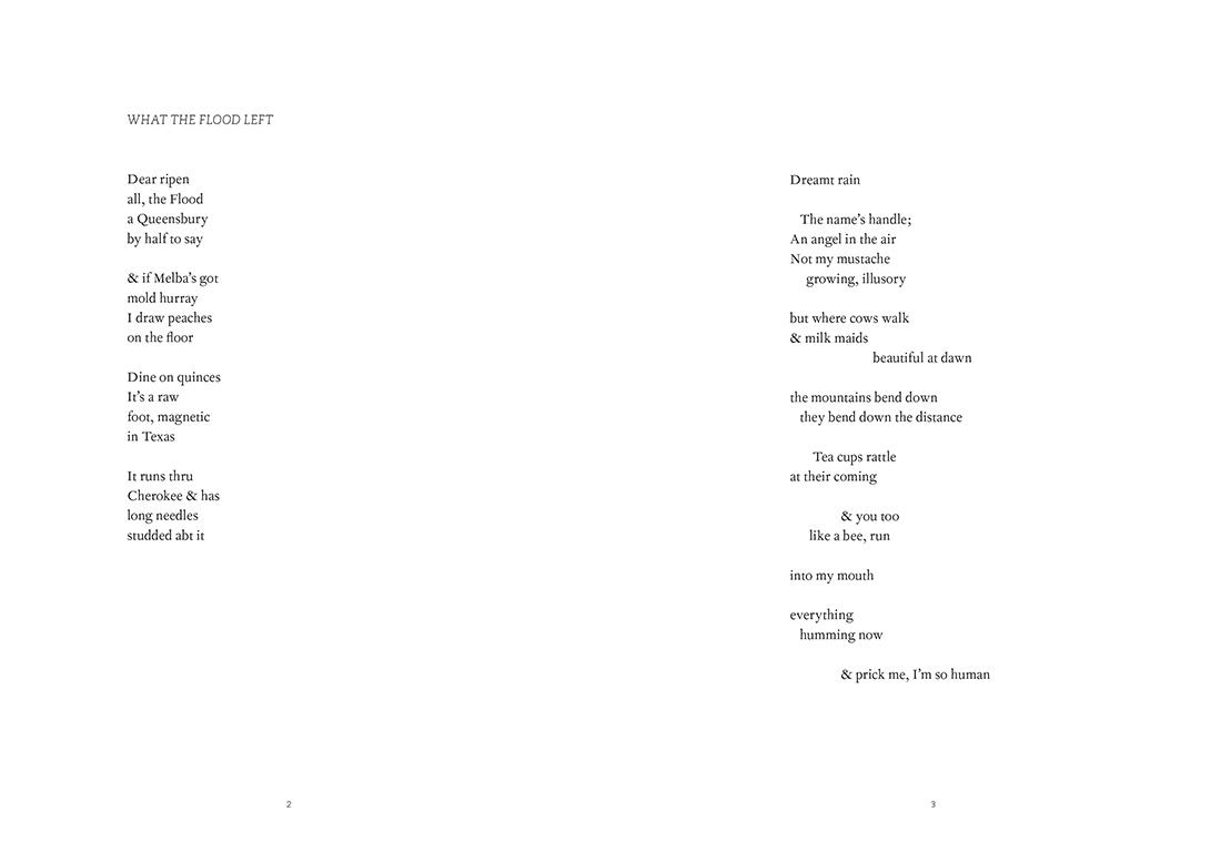 Siglio-UDP-Songs-of-S-Seydel-8.jpg