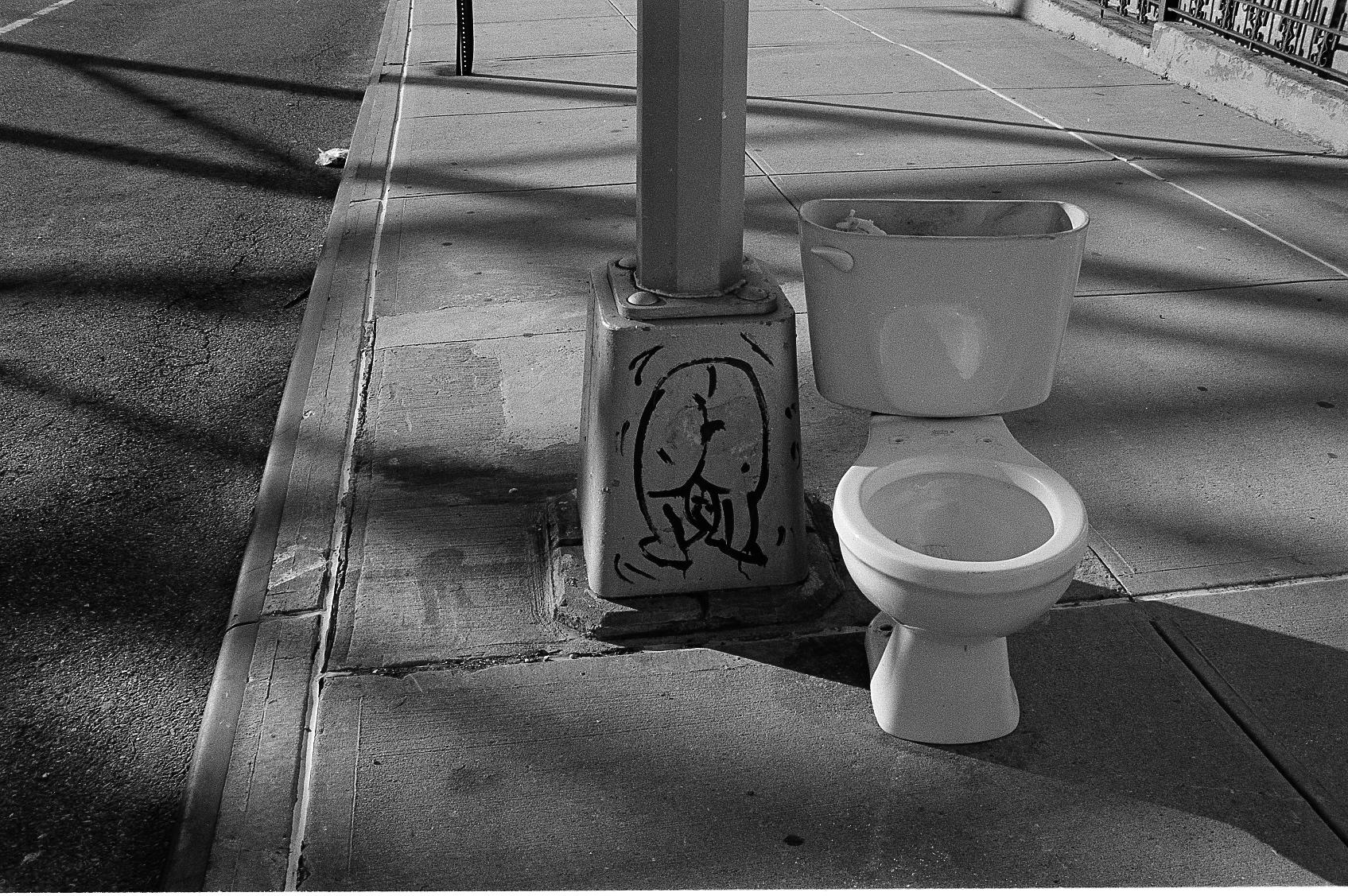 A butt & a toilet, Brooklyn, NY