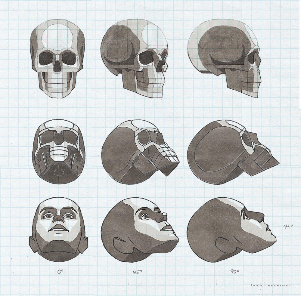 Head45Up2012Web.jpg