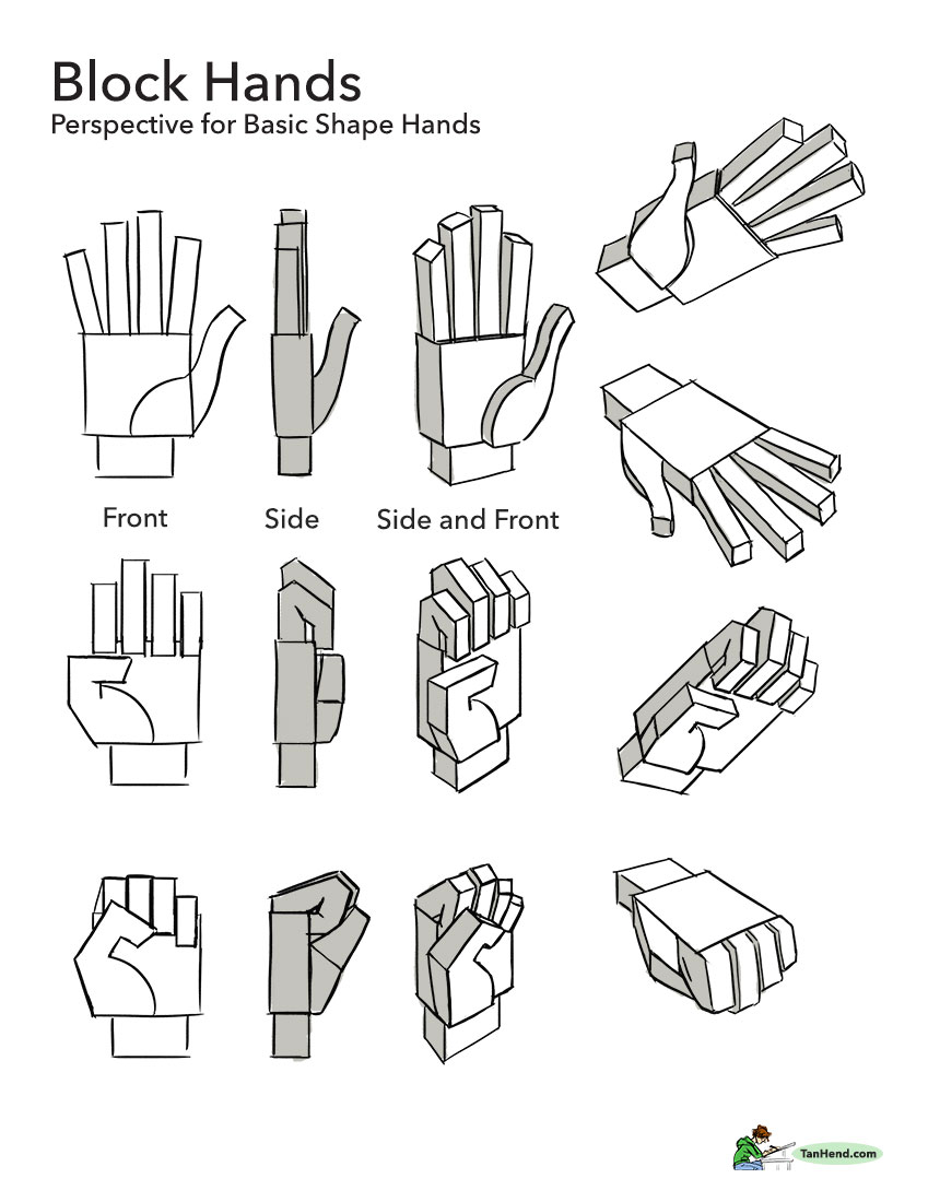 19_HandPerspectiveWeb.jpg