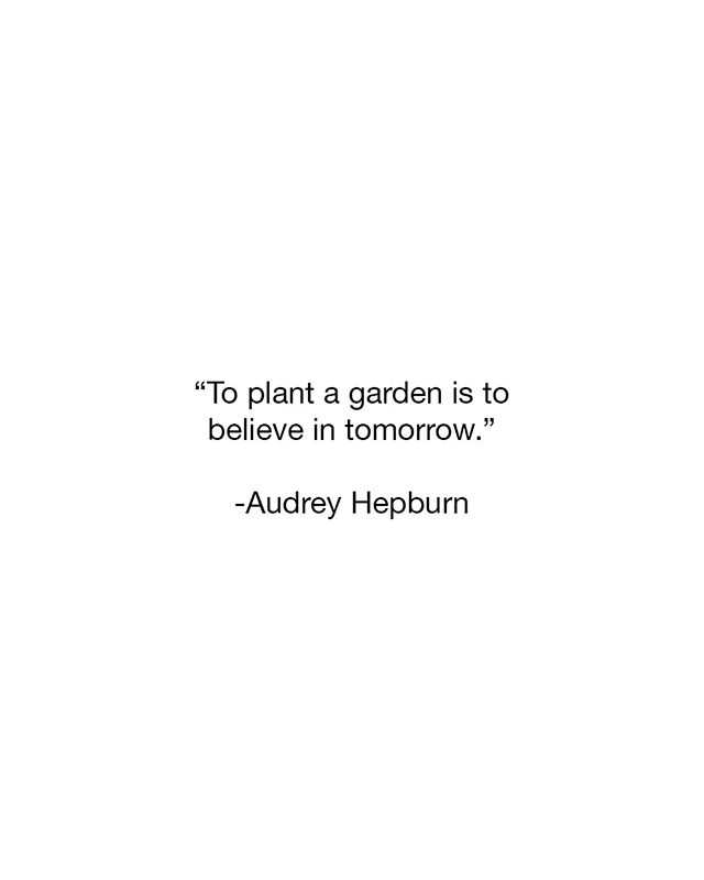 What did you plant today? #peoplewhodo #create #creative #ideas #motivate #goals #inspire #quotestoliveby #doyou #justdoit #liveyourlife #grow #growth #tomorrow