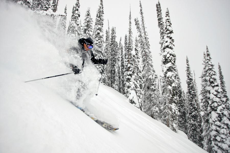Do you see all that powder?