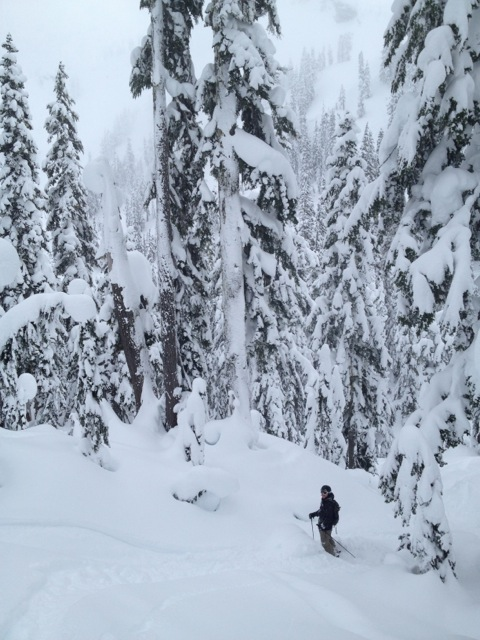 Getting a bit of side country at Mount Baker