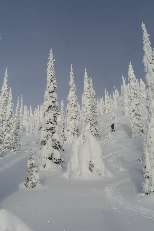 Total Heliski New Year's Heli Ski Tour (11).jpg