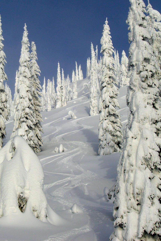 Total Heliski New Year's Heli Ski Tour (15).jpg