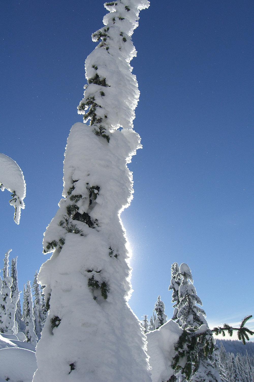 Total Heliski New Year's Heli Ski Tour (19).jpg