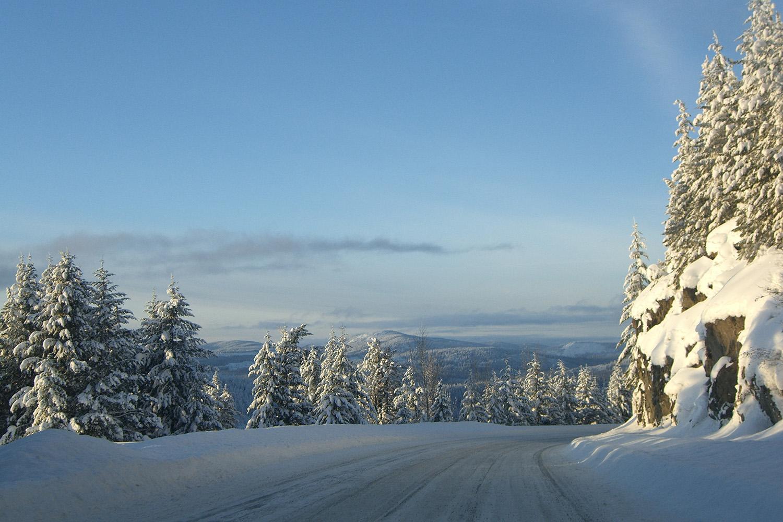 Total Heliski New Year's Heli Ski Tour (20).jpg