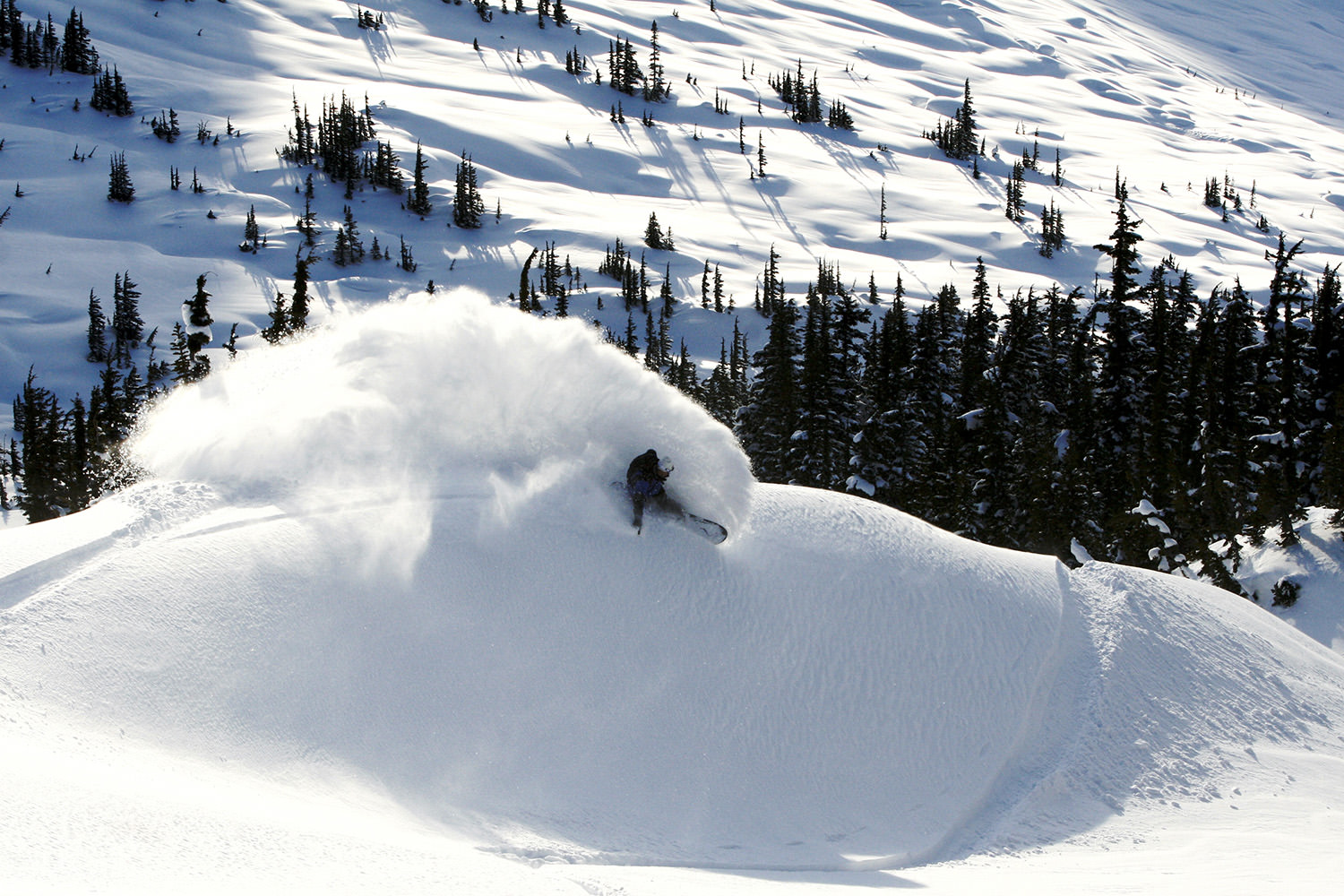 Heli skiing and boarding perfected.