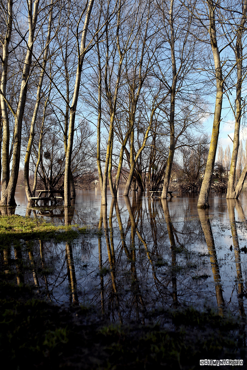 Pique-Nique déborde Seine