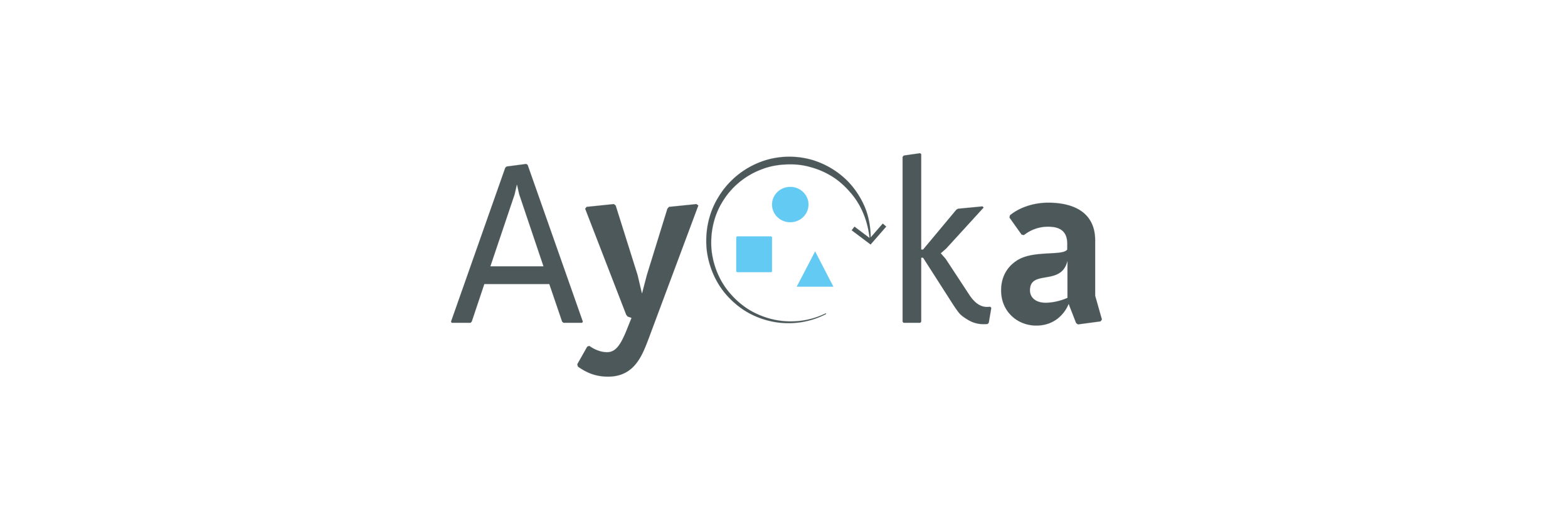 Ayoka_Website1.png