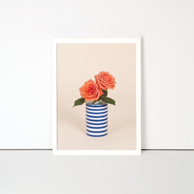 Who doesn't dream of an everlasting fresh St. Jordi's bouquet?  In Flora we make that dream possible. ✨  Next St. Jordi's Day, you can enjoy your bouquet eternally!  #santjordi #santjordiexperience #rose #fresh #bouquet #eternalplant #colour #design #interiordesign #poster #flora #floraindoor