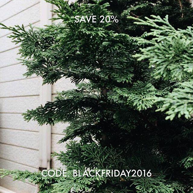 HAPPY BLACK FRIDAY! Take advantage of Black Friday! Use the code BLACKFRIDAY2016 at Checkout and save 20%. Starts 25 November - Ends 28 November at midnight.  #blackfriday #blackfriday2016 #happyblackfriday #save20 #loveplants #fresh #nature #flora #floraindoor