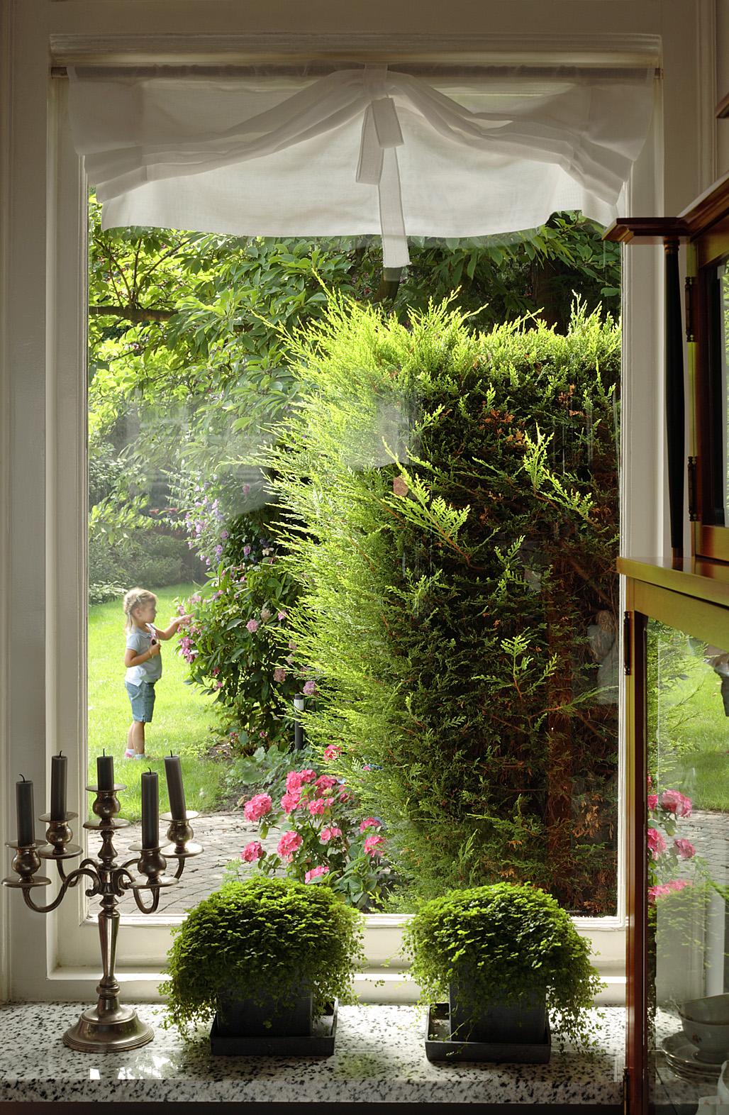 Duże, holenderskie okna
