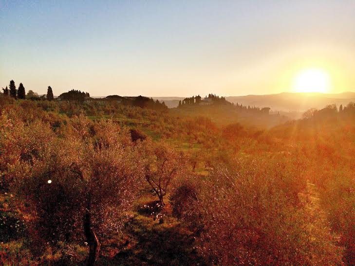 Sunset Aperitivo Bike Tour from Florence