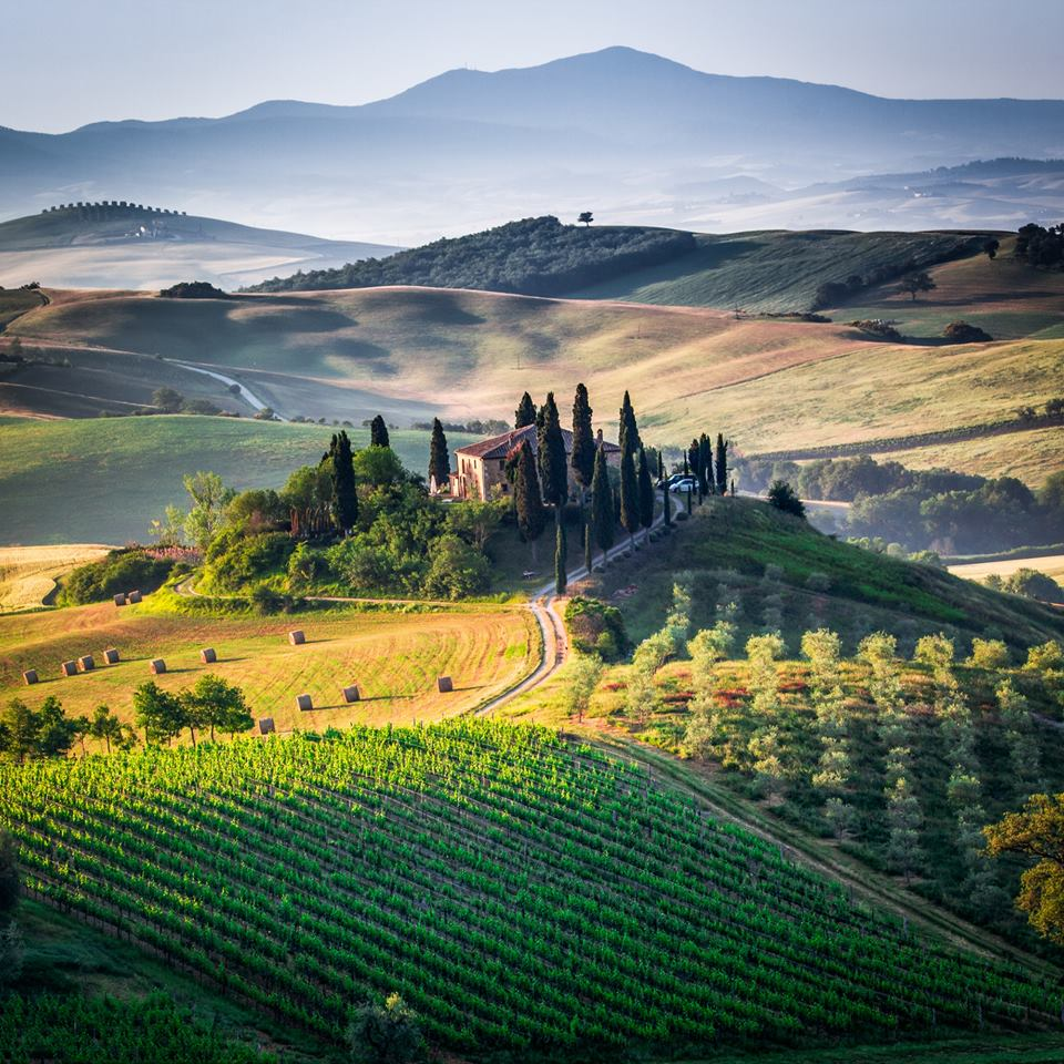 Active Bike Tour from Florence to Chianti