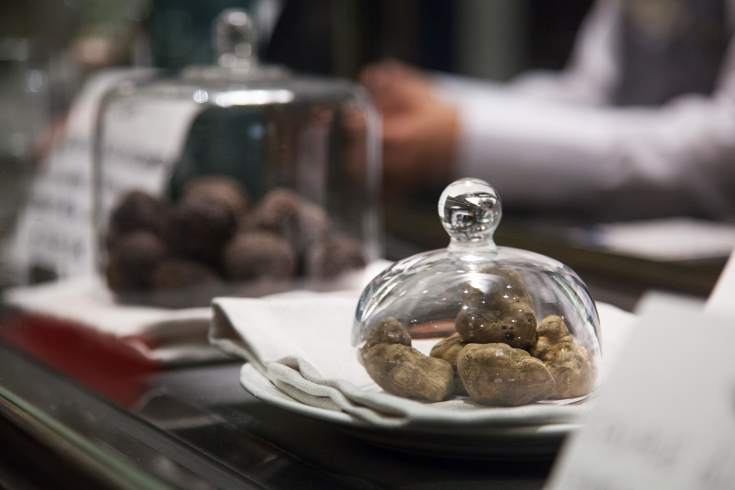 white truffles in florence procacci