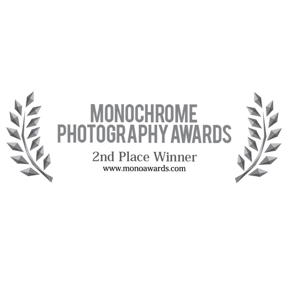 Professional Portrait category 2018
