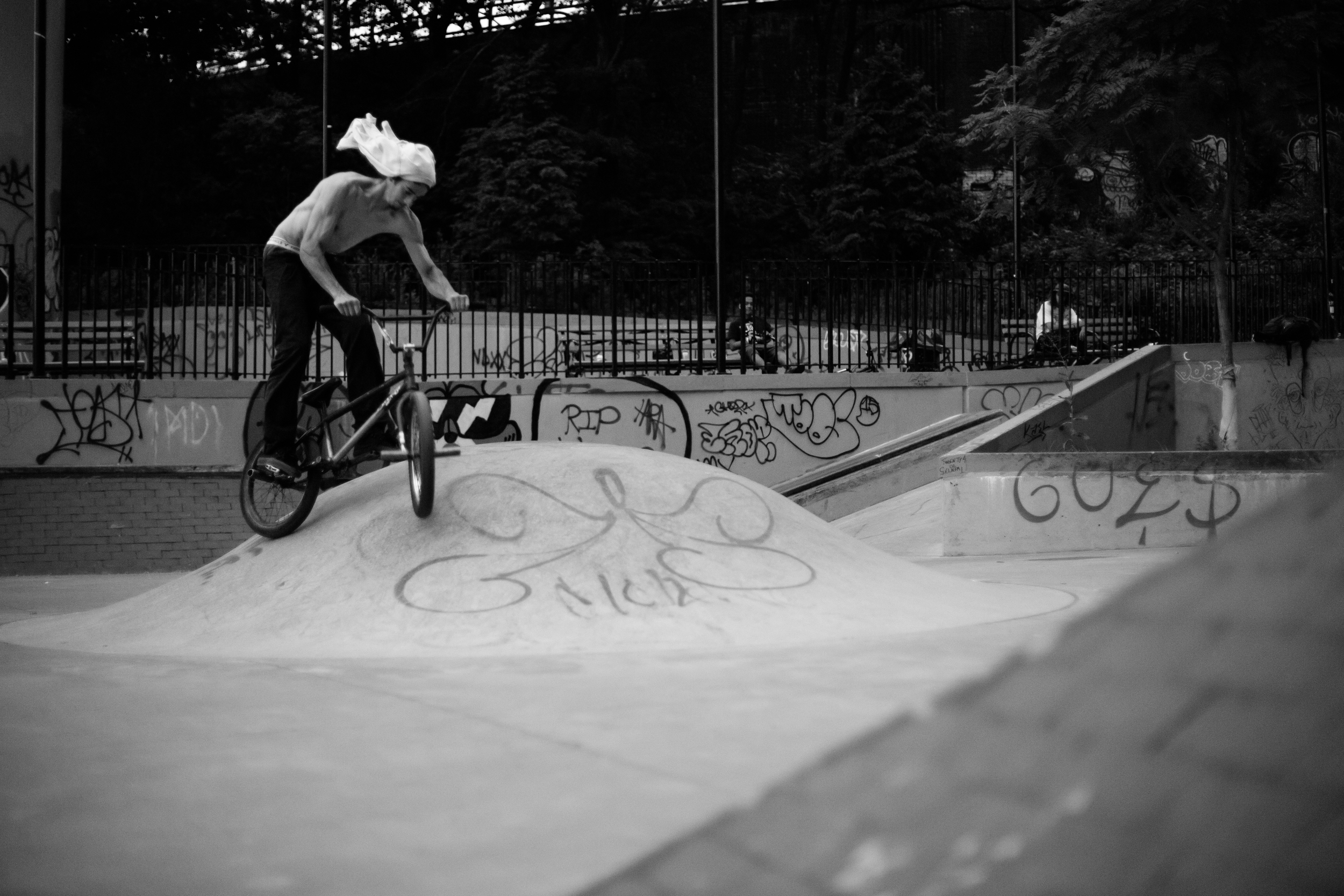 Hawkegg / Brooklyn, NY