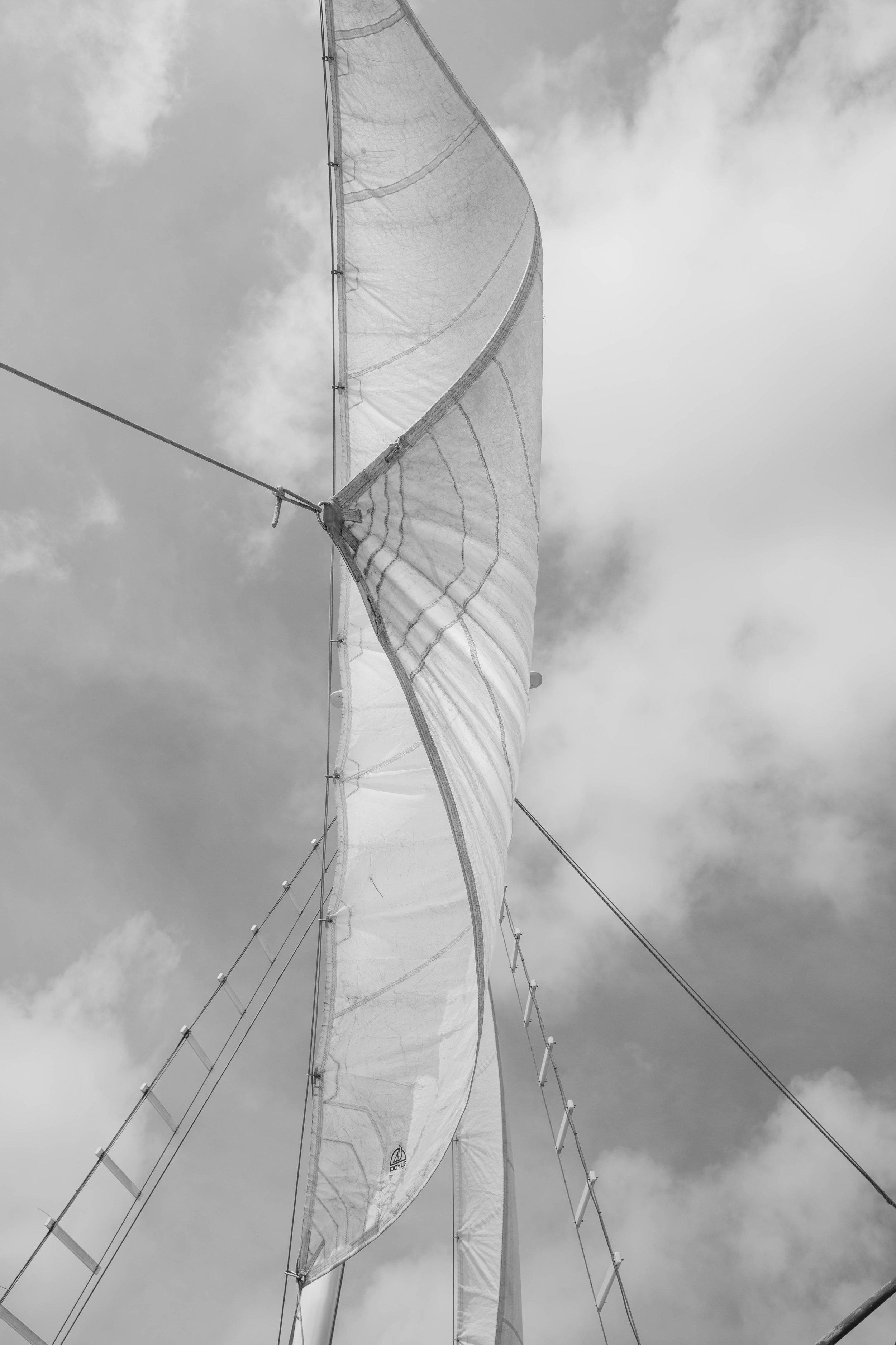 sails3new (1 of 1).jpg