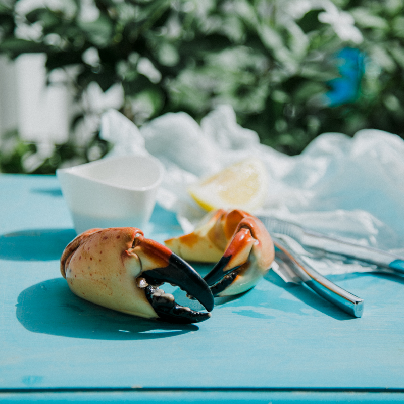 key west food photographer, restaurant key west, recipe florida, lena perkins, styling, lifestyle, eat, lunch, dinner, salad, stone crab.jpg