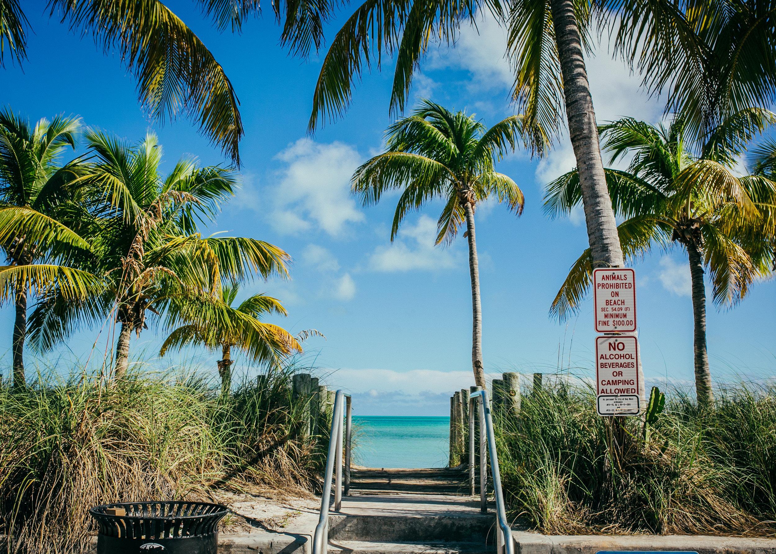 key west smathers, visit florida, key west photographer, lena perkins, white street, bicycle, white street pier, cayo hueso, island, tropics, palm tree, beach, key west wedding.jpg