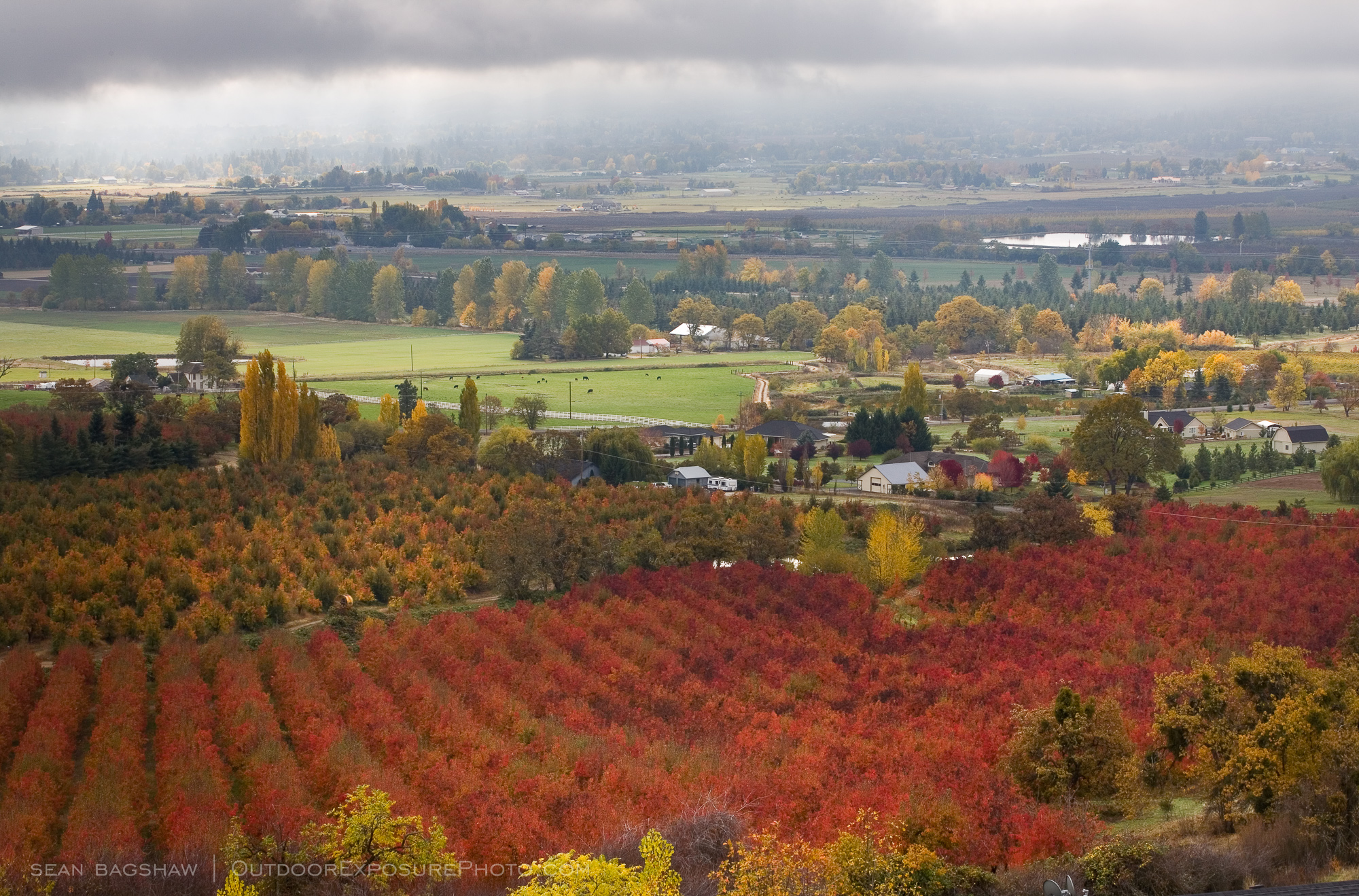 THE ROGUE VALLEY PUTS ON A RIOT OF COLOR EACH FALL