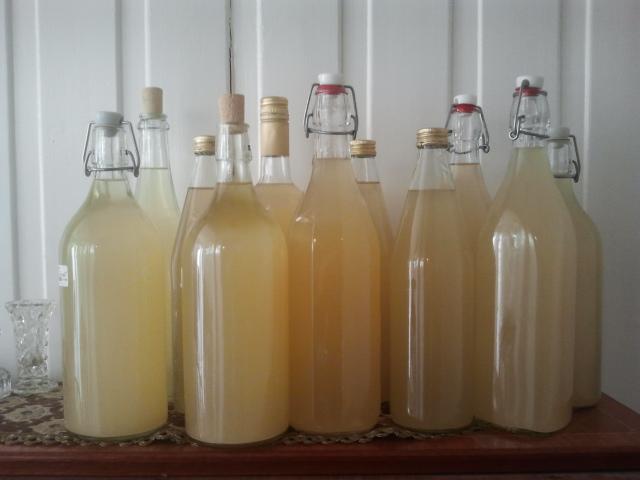 Tappet på flaske1- 2.5.14.jpg