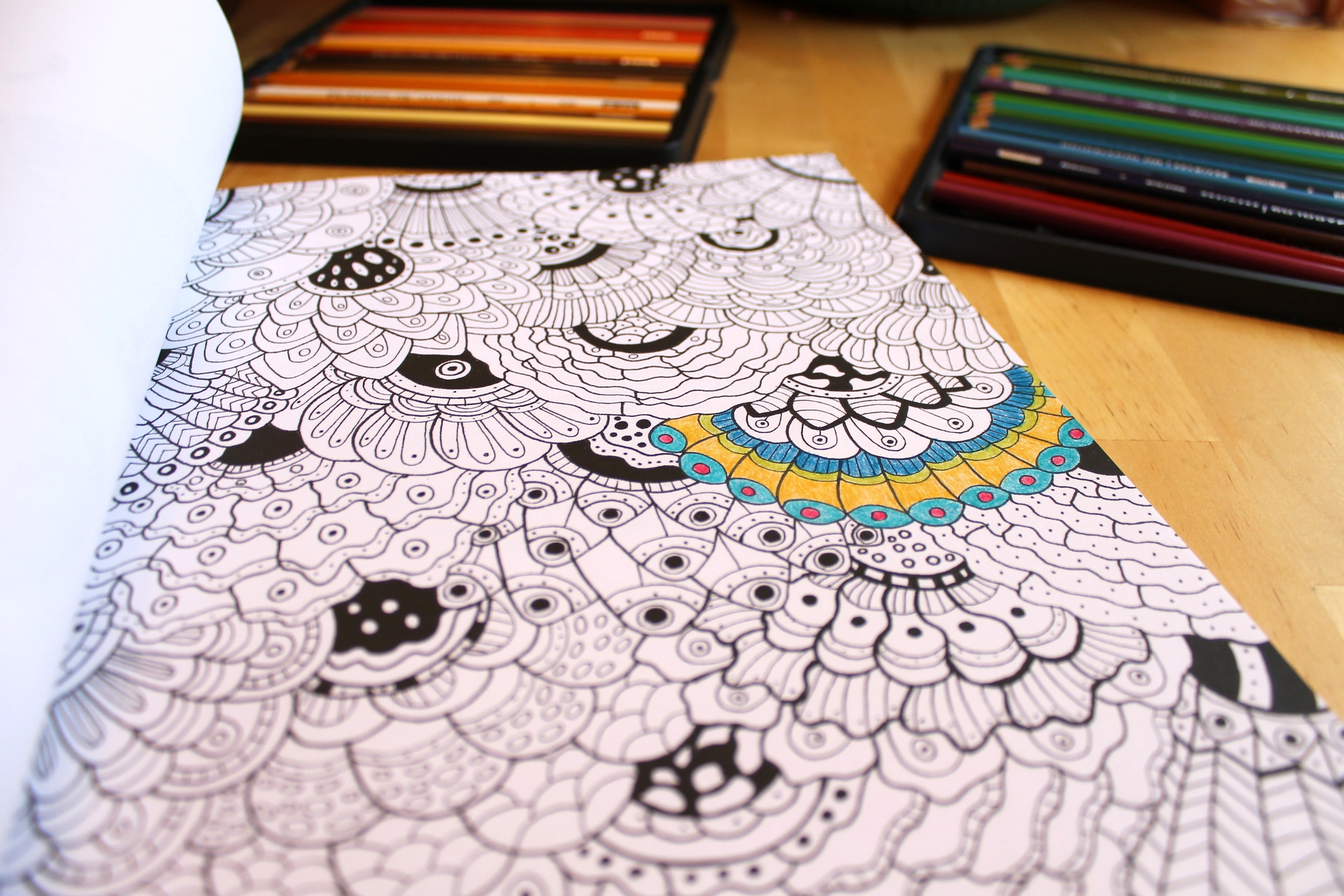 Aflutter adult coloring book by Sereen Gualtieri