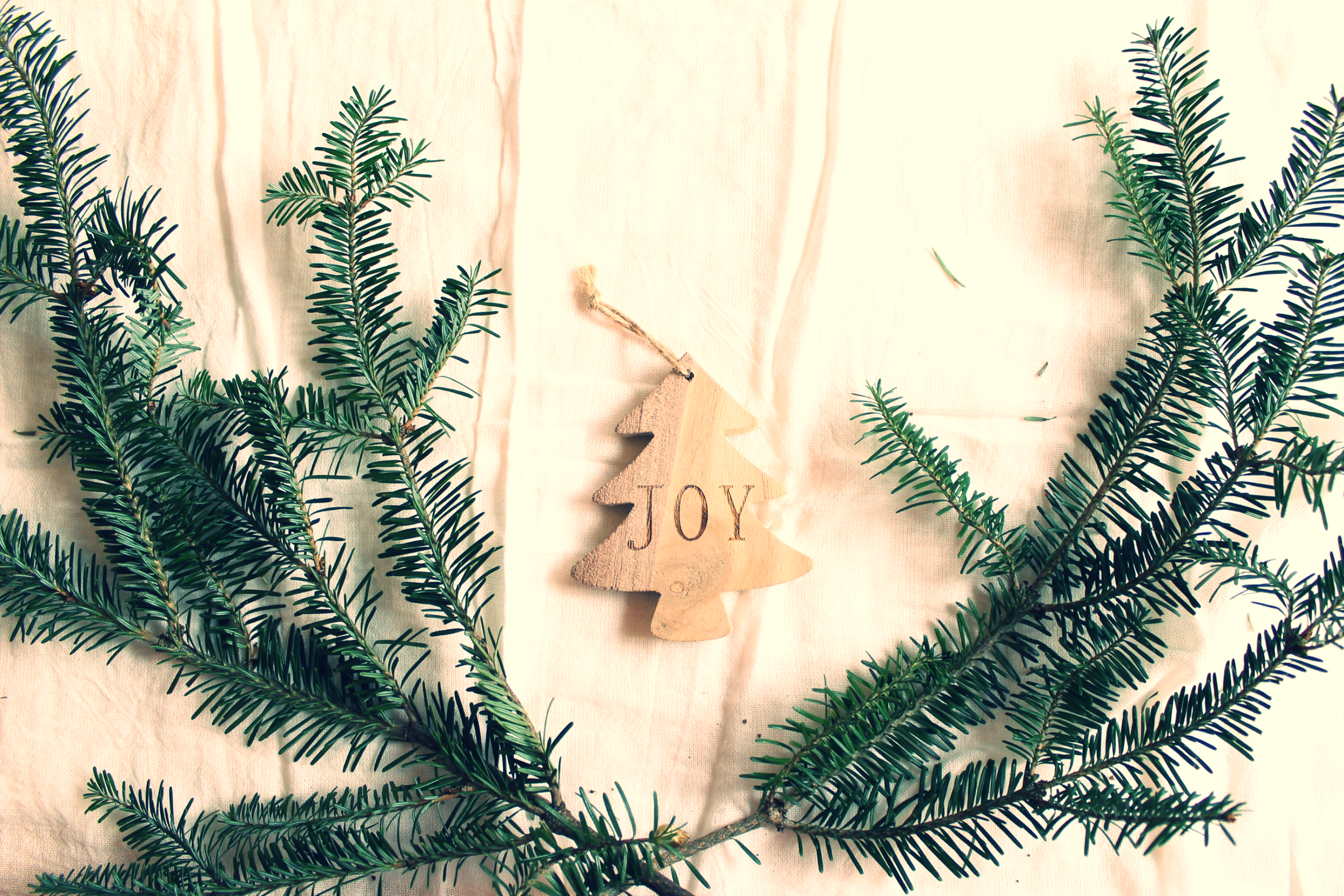 getting lost in wonder this christmas, finding joy   Feathers & Roots