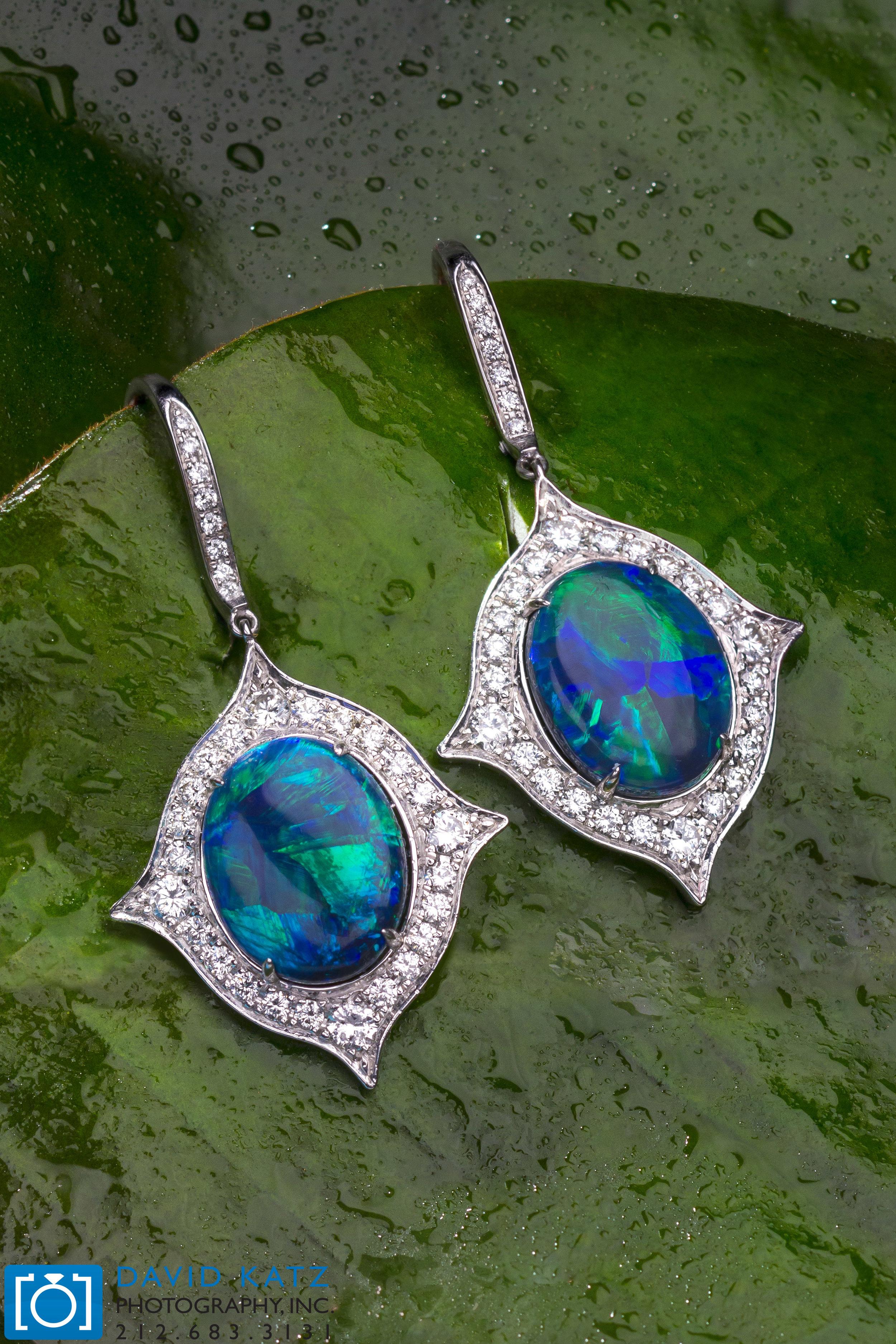 Opal Earrings on Leaf2_NEWLOGO.jpg