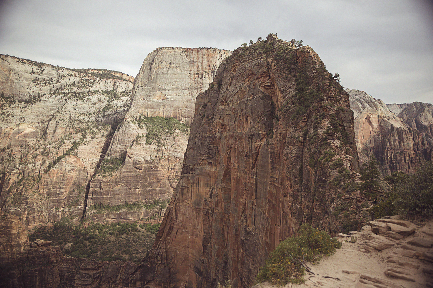 2017-06-08_Zion_Nationalpark_026.jpg
