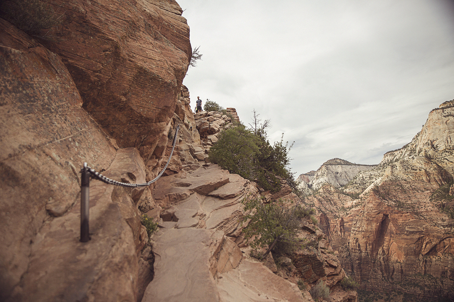 2017-06-08_Zion_Nationalpark_027.jpg